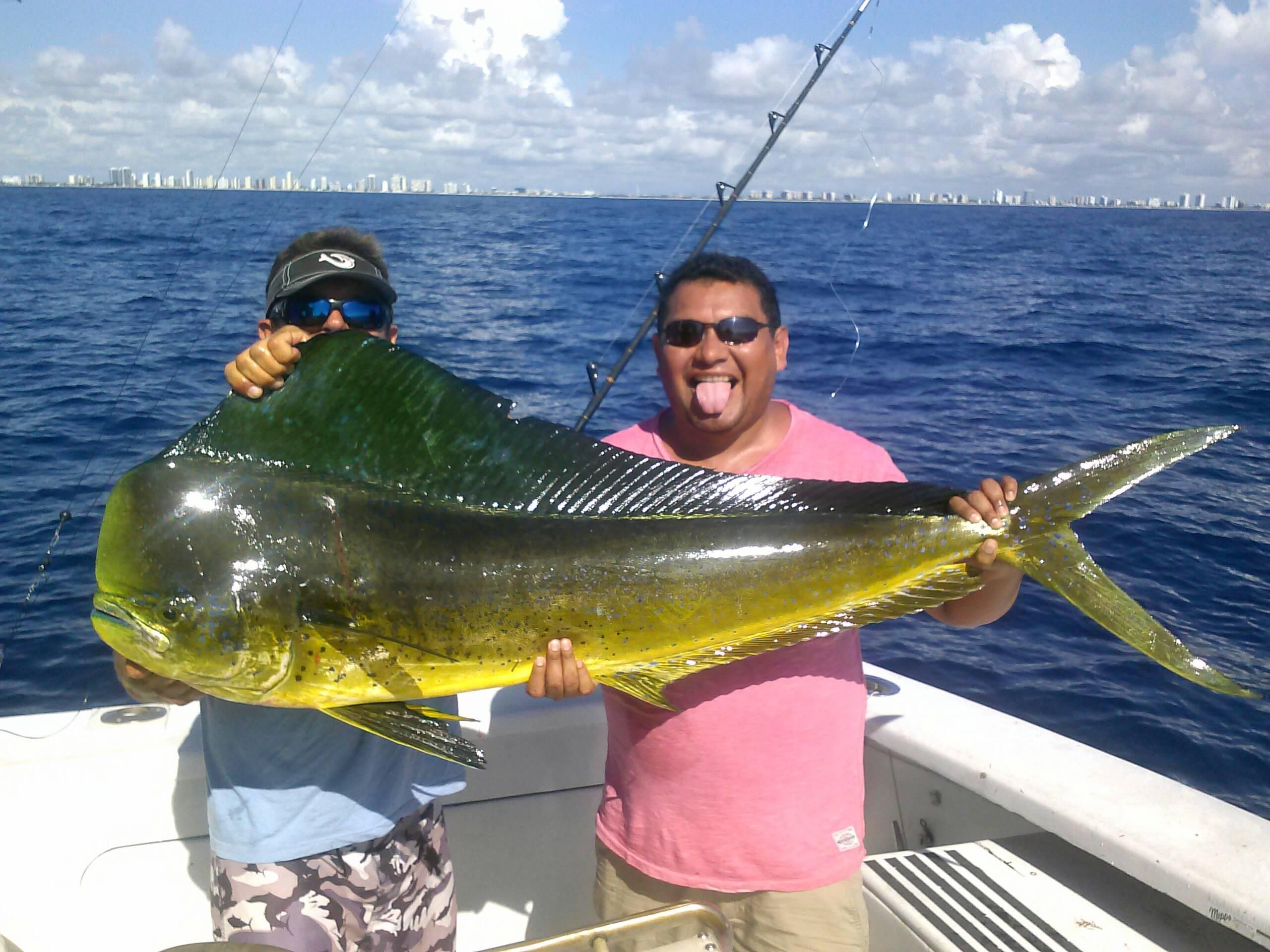 Slob dolphin caught on our sportfishing charter today in for Fishing spots in fort lauderdale