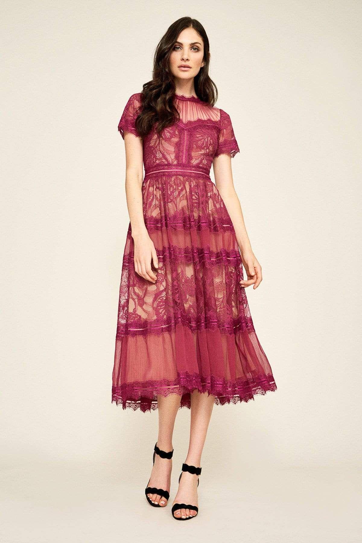 Tadashi Shoji Lace Shirred Jewel Tea Length Dress Tea Length Dresses Calf Length Dress Dresses [ 1800 x 1200 Pixel ]