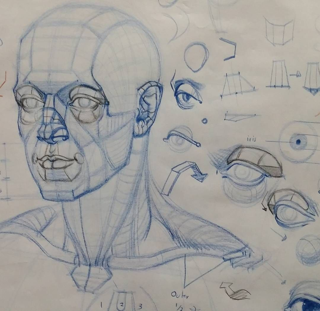 Pinned by Ellen Rus. | Dibujo | Pinterest | Sketch drawing, Anatomy ...