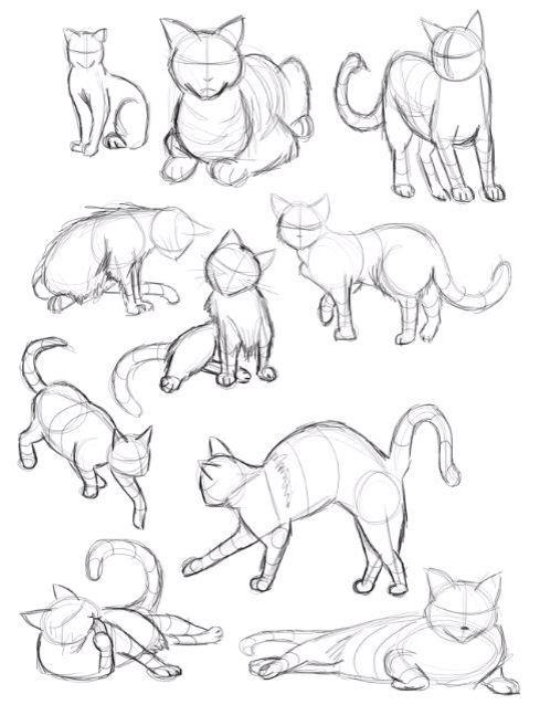 Sketches of cats cartoon cats comic cats