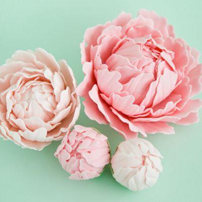 How To Make A Gum Paste Peony Part 1 Cakejournal Com Sugar Flowers Tutorial Fondant Flower Tutorial Gum Paste Flowers