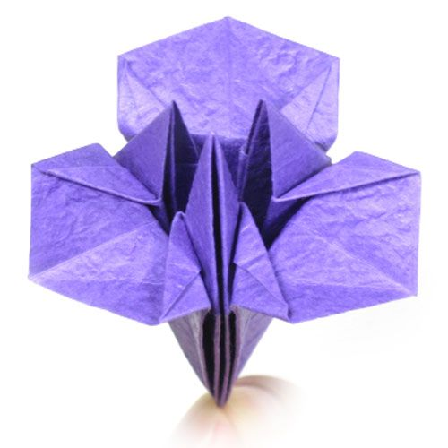 How To Make A Simple Origami Iris Flower Httporigami Flower