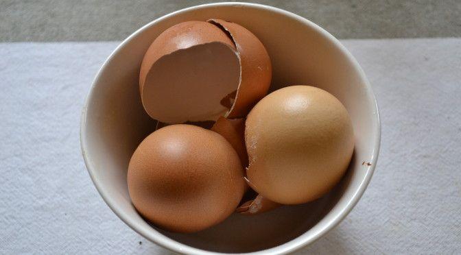 Eierschalen Im Garten Verwenden   Kalkdünger, Schneckenbekämpfung Und  Bodenlockerung