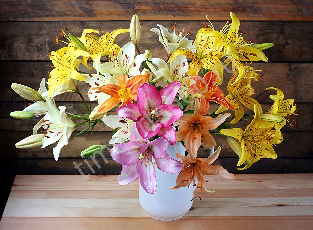 Яркие лилии в белой вазе | Красивые цветы, Фото цветов