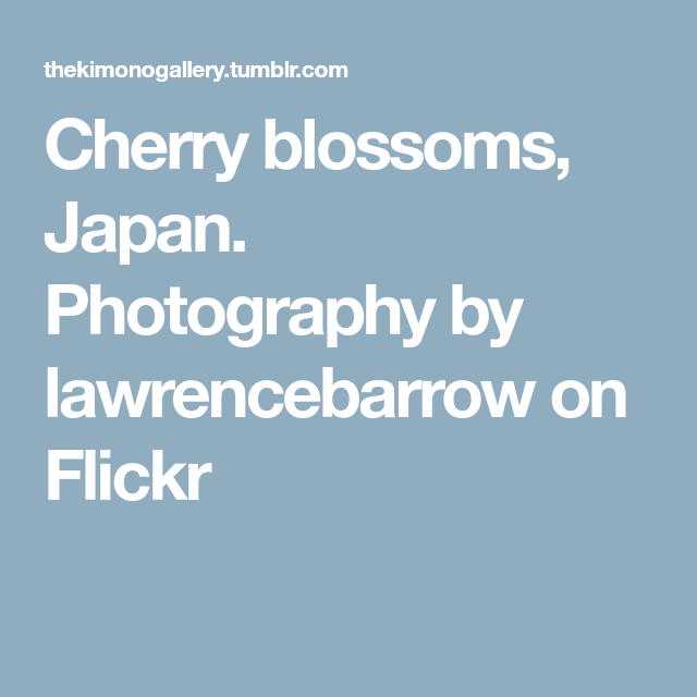 Cherry blossoms, Japan. Photography by lawrencebarrow on Flickr