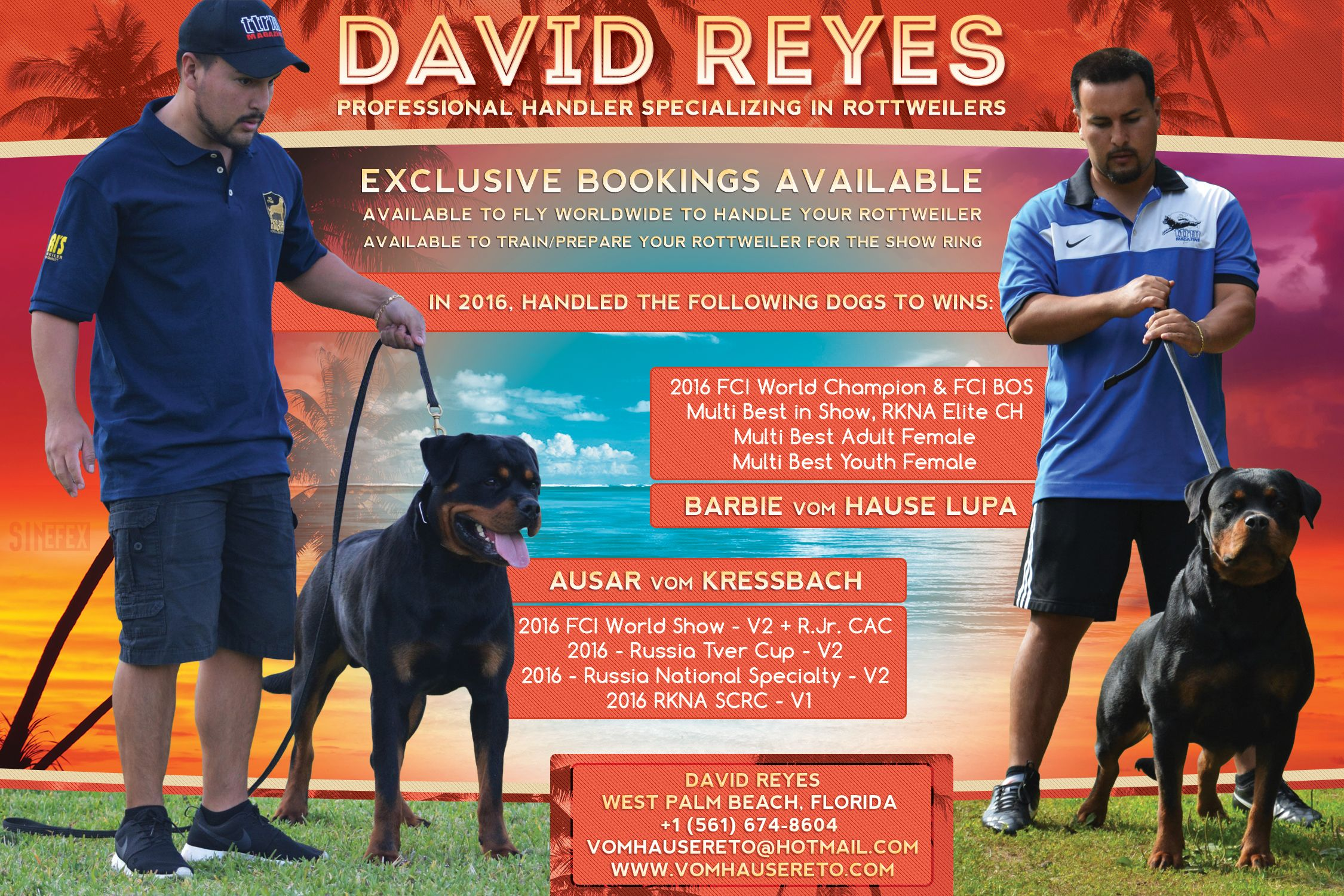 David Reyes Professional Handler Specializing In Rottweilers Stay