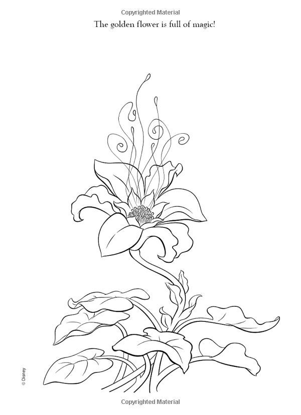Tangled Images Icons Wallpapers And Photos On Fanpop Rapunzel Coloring Pages Tangled Coloring Pages Tangled Flower