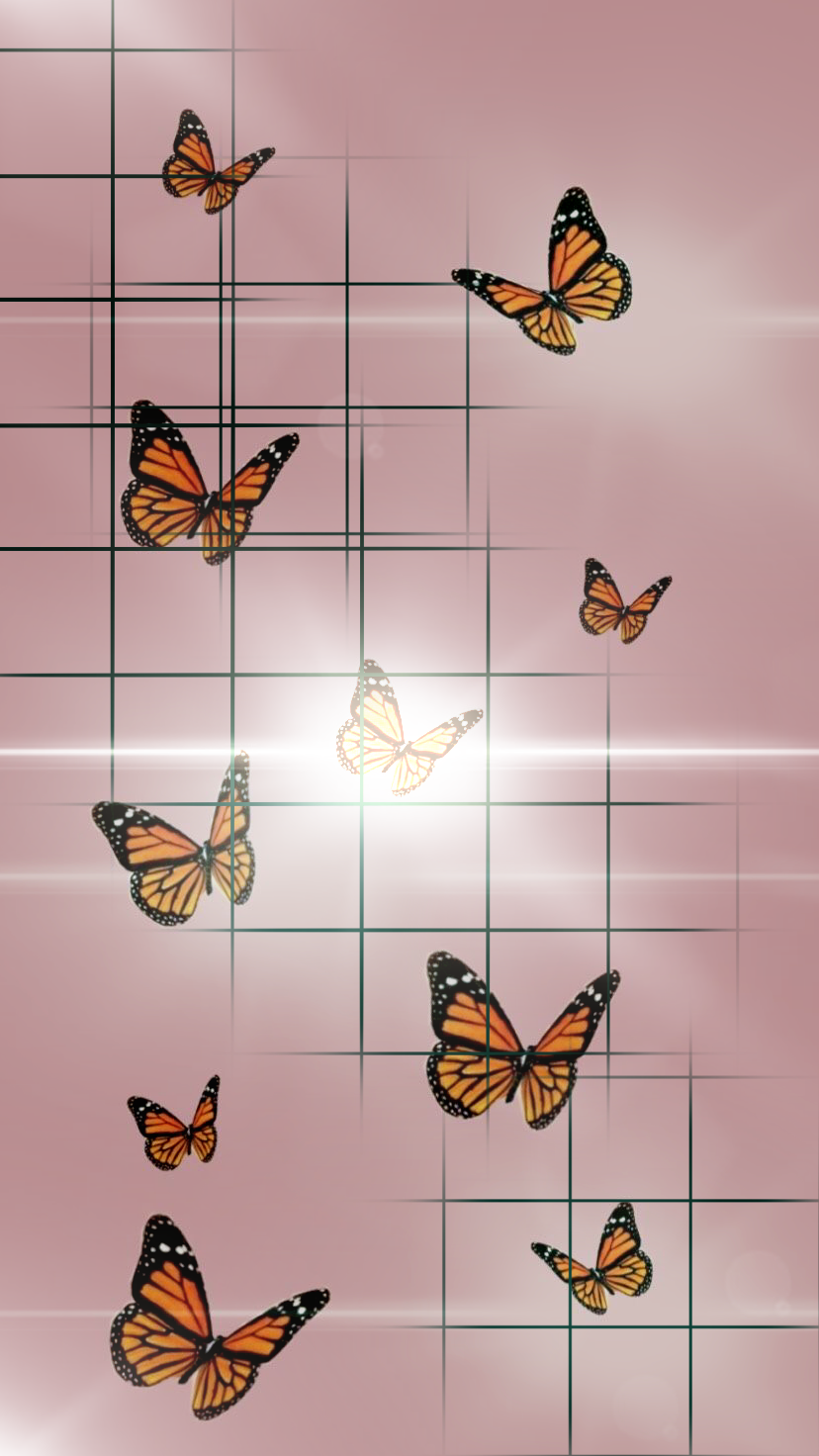 Butterfly Wallpaper Butterfly Wallpaper Butterfly Wallpaper Iphone Aesthetic Iphone Wallpaper