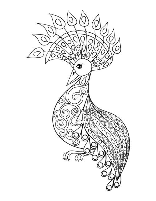 Advanced Bird Coloring Page   Free, Adult coloring and Bird