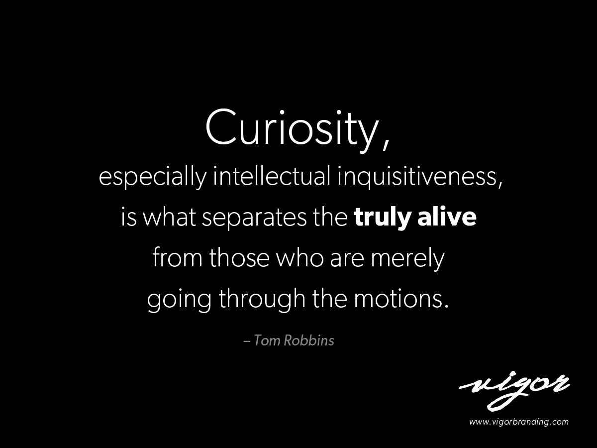Great Quote By Tom Robbins Never Stop Being Curious Always Ask What If Curiosity Quotes Wise Quotes Tom Robbins Quotes