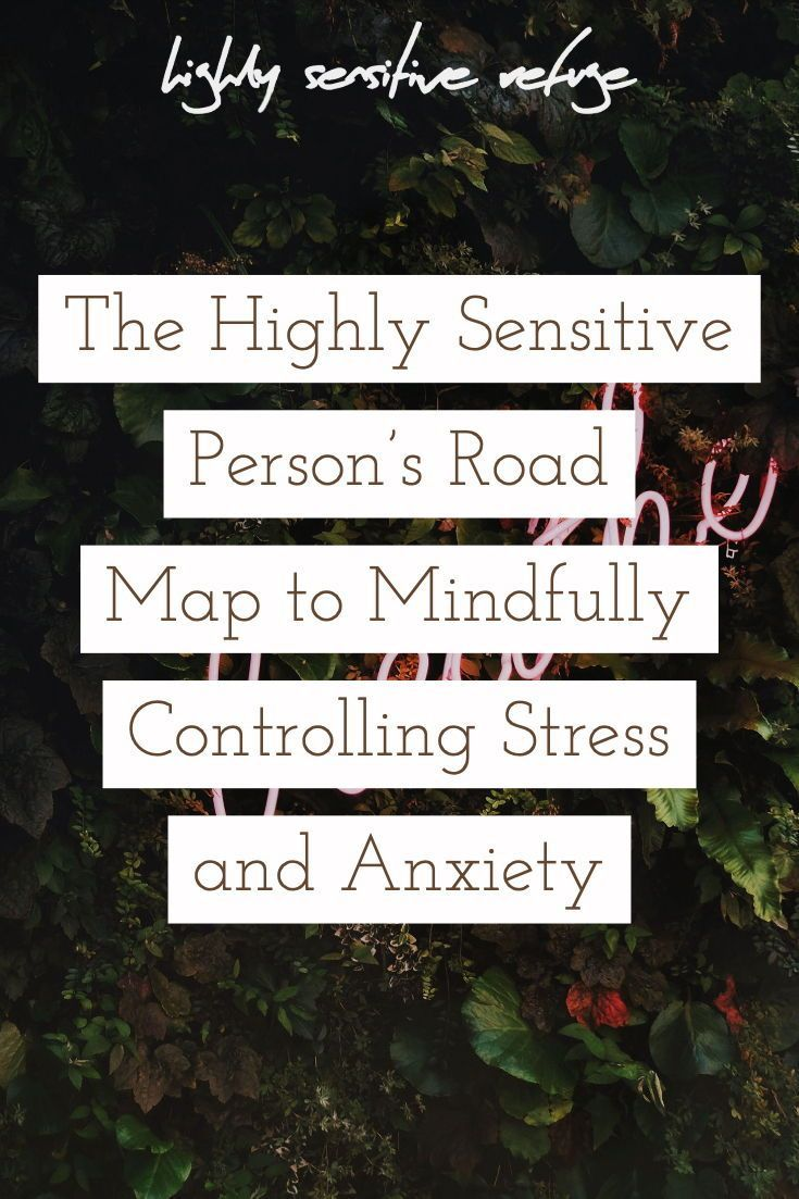 The Highly Sensitive Person's Road Map to Mindfully Controlling Stress and Anxiety