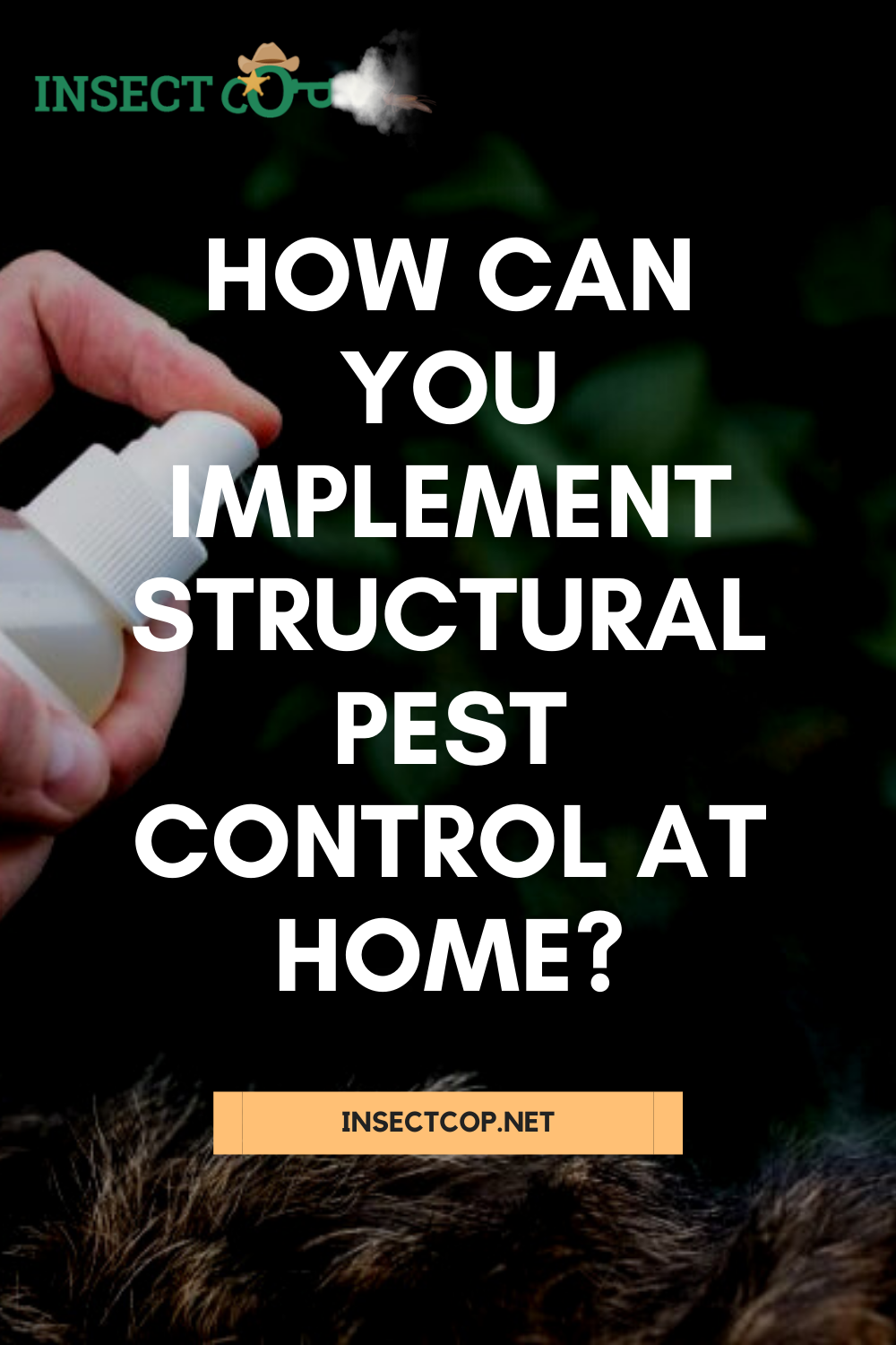 What Is Structural Pest Control In 2020 Pest Control Pests Integrated Pest Management