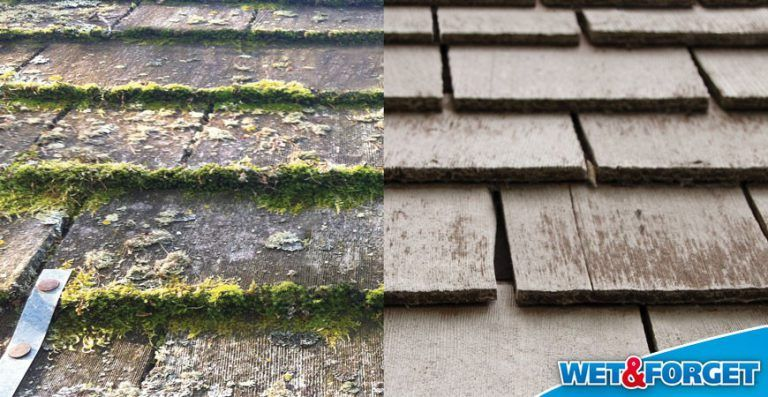 Roof Cleaning 101 The Complete Guide Wet Forget Blog In 2020 Roof Cleaning How Do You Clean Moss Removal