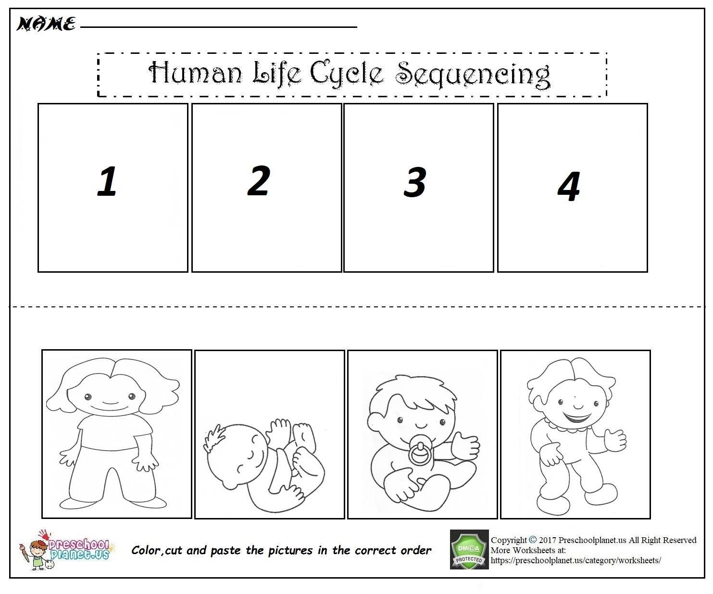 Resultado De Imagen Para Preschool Sequencing Worksheets
