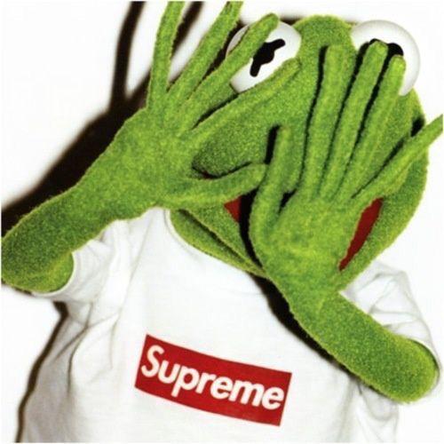 Thestyleraconteur Supreme Kermit