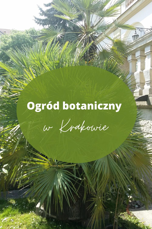 Ogrod Botaniczny W Krakowie Herbs