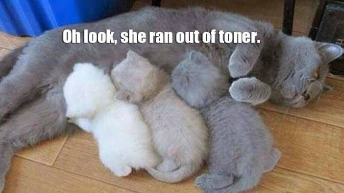 She Ran Out of Toner