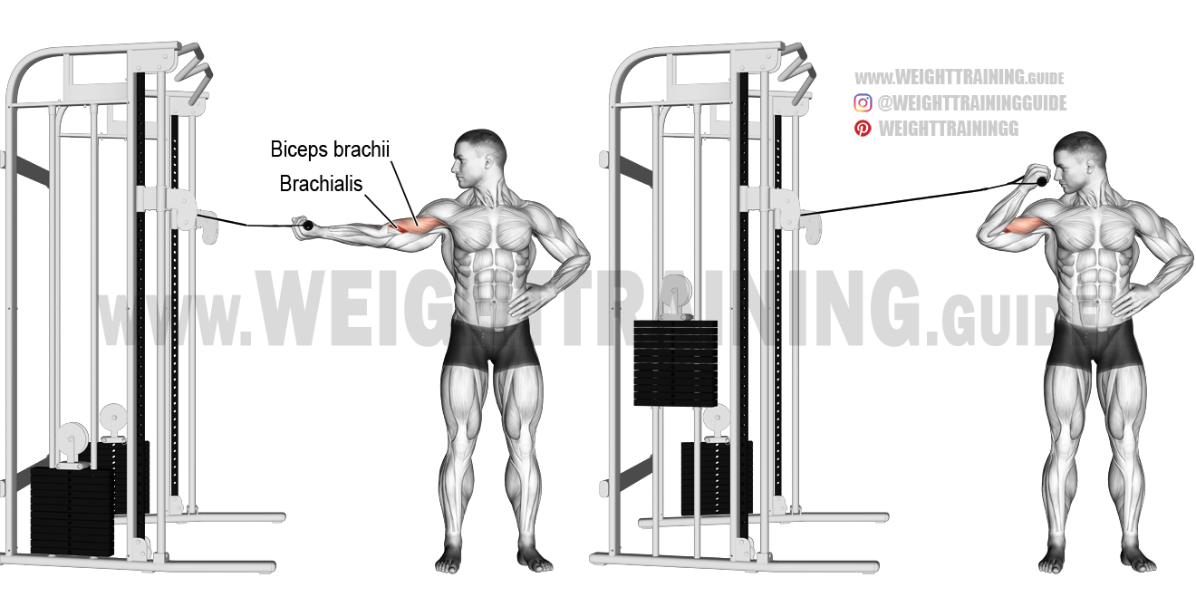 One-arm overhead cable curl exercise instructions and
