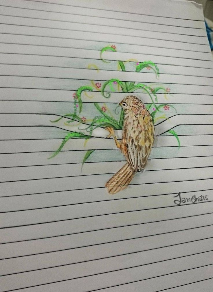 Image result for animal pencil drawings on paper