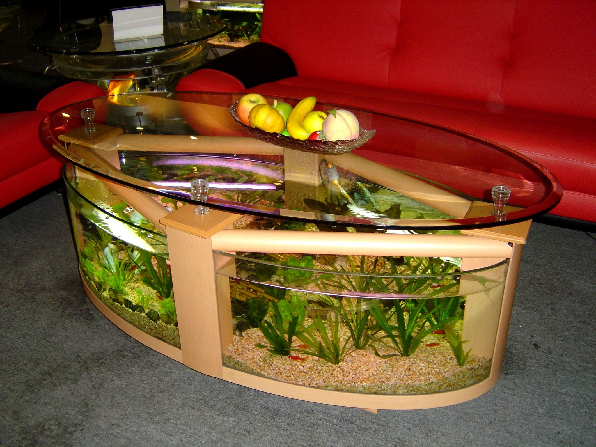 table aquariums. i prefer the ones with no sharp corners | it's a