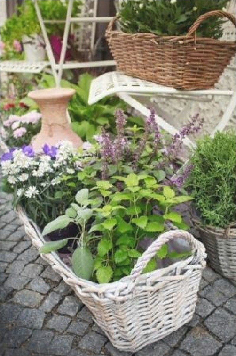 42 Creative Small Space Flower Garden Ideas 43 Herb Design Savingourboysfo 7