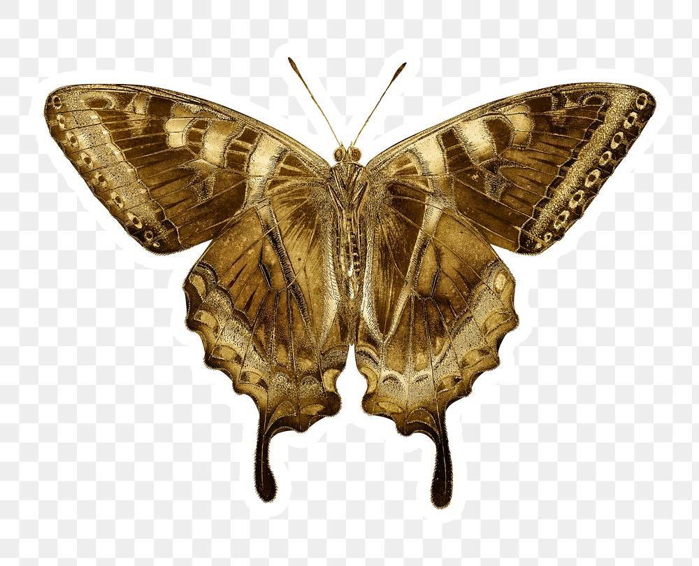 Gold Butterfly Sticker Design Element Free Image By Rawpixel Com Winn Gold Butterfly Sticker Design Design Element