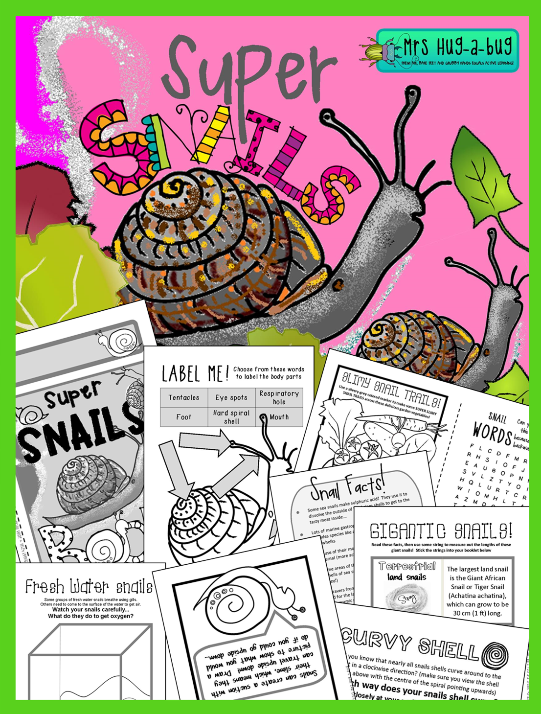 Snails Fun Amp Facts About Terrestrial Amp Aquatic Snails Amp Slugs