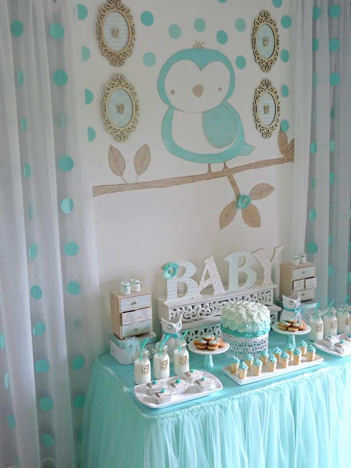 Turquoise Owl Welcome Home Baby Party Welcome Baby Party