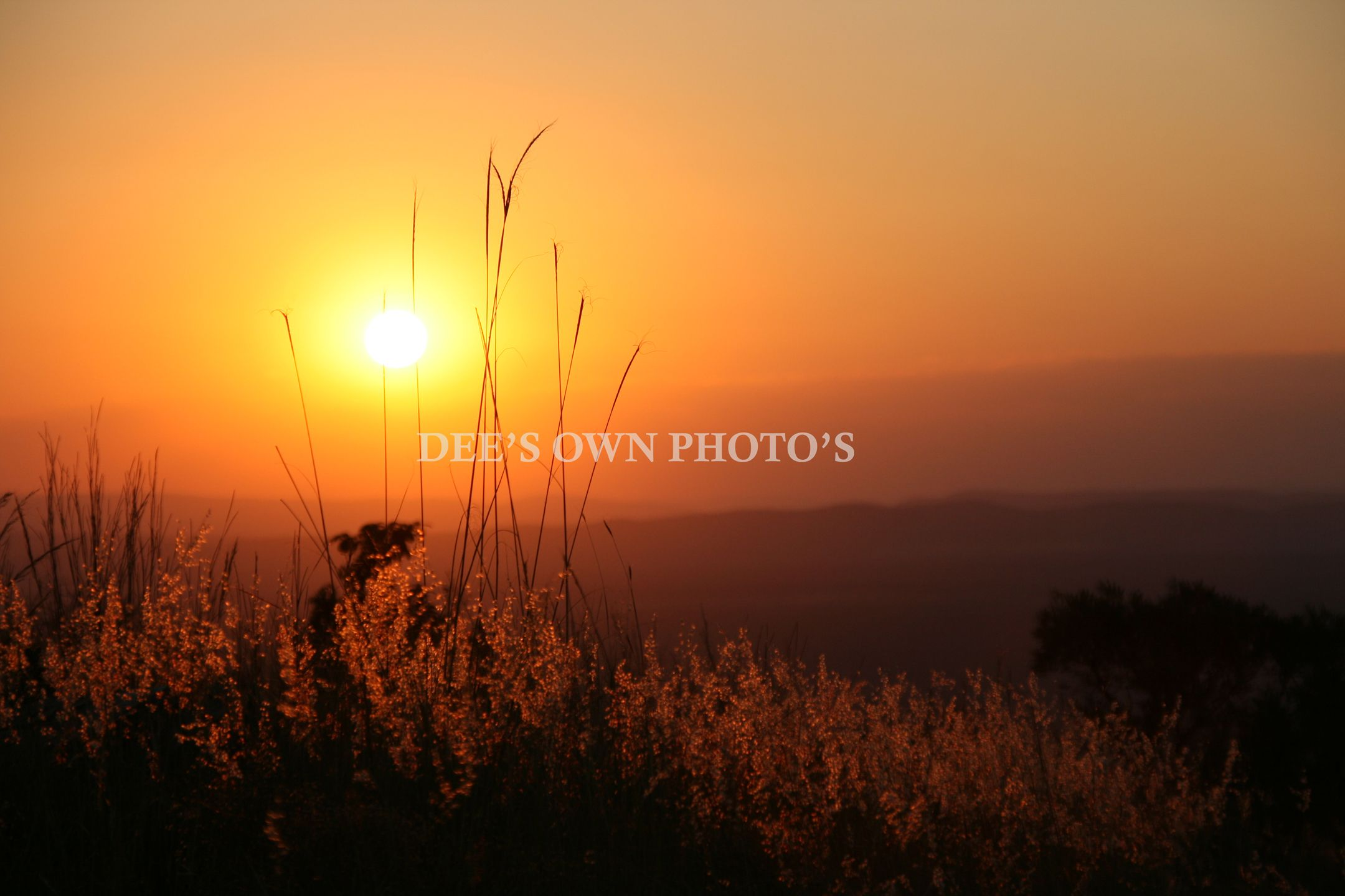 A Weekend At Mabalingwe Nature Reserve Nature Reserve Africa Travel Nature