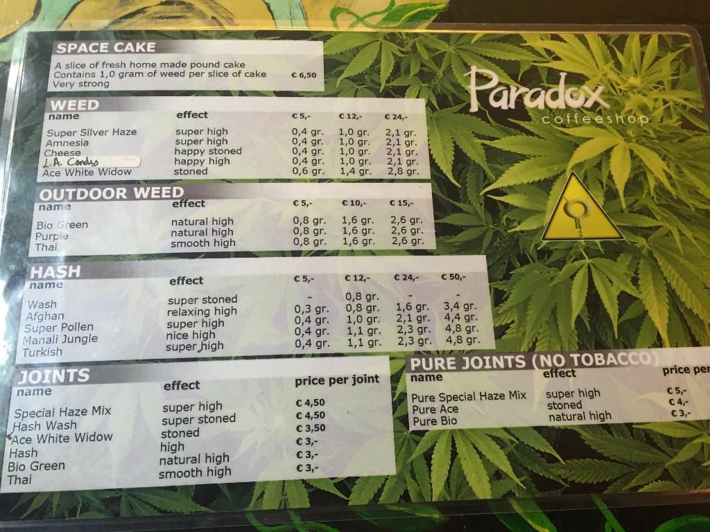 Paradox Coffeeshop Amsterdam 2018 All You Need To Know Before