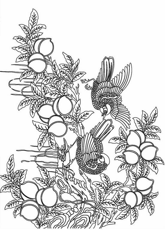 Advanced Printable Coloring Pages For Adults Free 5 550x767