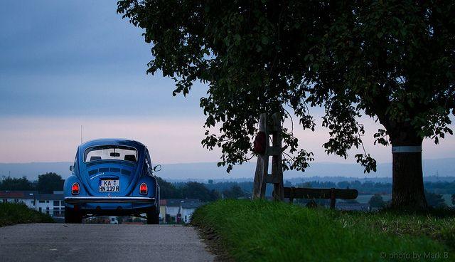 Käfer und Baum by sanchezphotozone, via Flickr