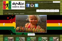 Website For Small Business Boise Http Sureleader Com Gallery Portfolio Web Design Web Design Website