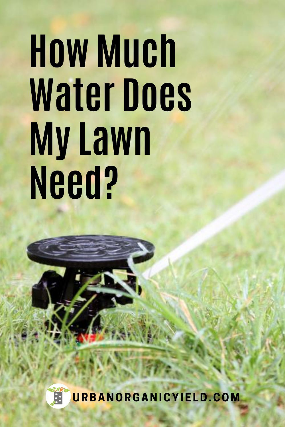 Do You Know How Often You Should Turn My Sprinkler System To Water The Lawn How Much Water Does Your Lawn Need Read On To Fin