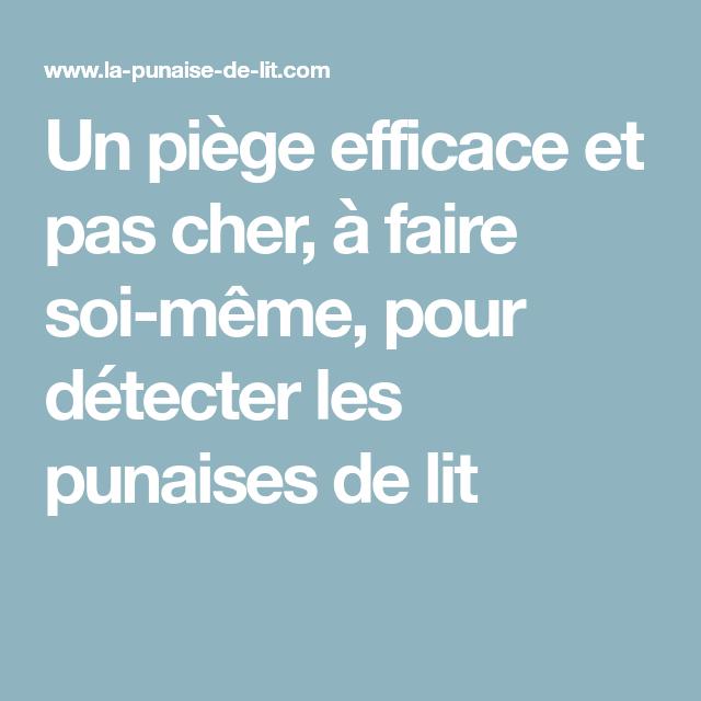 Un Piege Efficace Et Pas Cher A Faire Soi Meme Pour Detecter Les