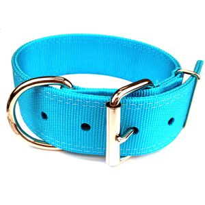 Turquoise Big Dog Collar Great For Rotweilers Pit Bulls Labs