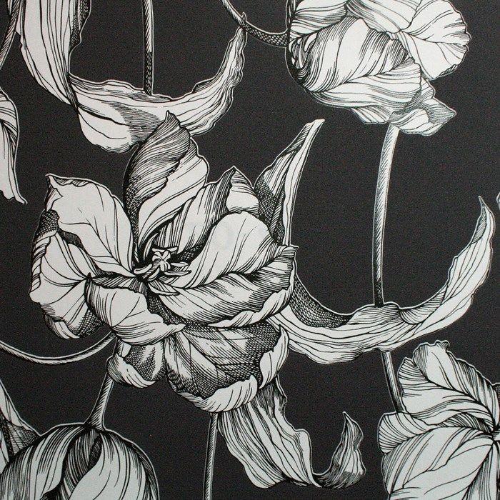 Harem Tulips Wallpaper By Laurence Llewelyn Bowen Black