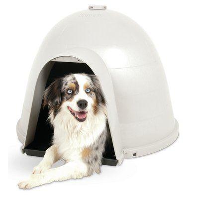 Tucker Murphy Pet Jemima Dog House Cool Dog Houses Igloo Dog