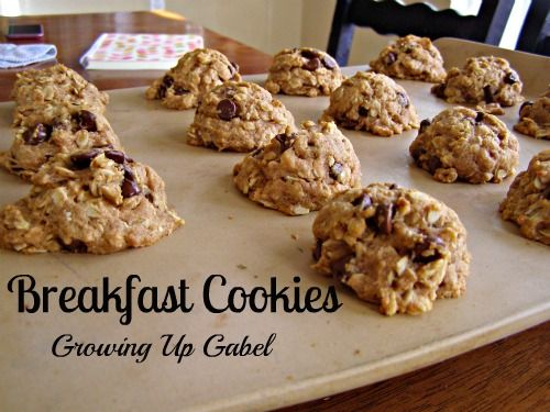 Breakfast Cookies - I think my kids would go for these, LOL!
