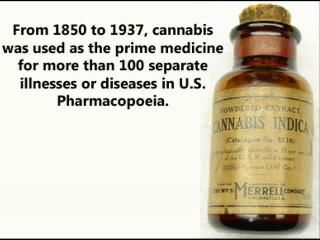 From 1850 to 1937, cannabis was used as the prime medicine for more than 100 separate illnesses or diseases in the US