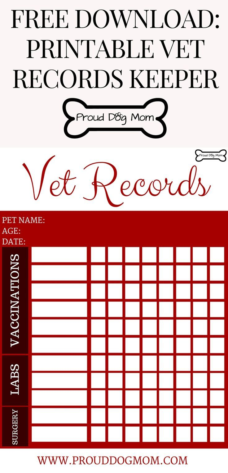 FREE DOWNLOAD Printable Vet Records Keeper, Download