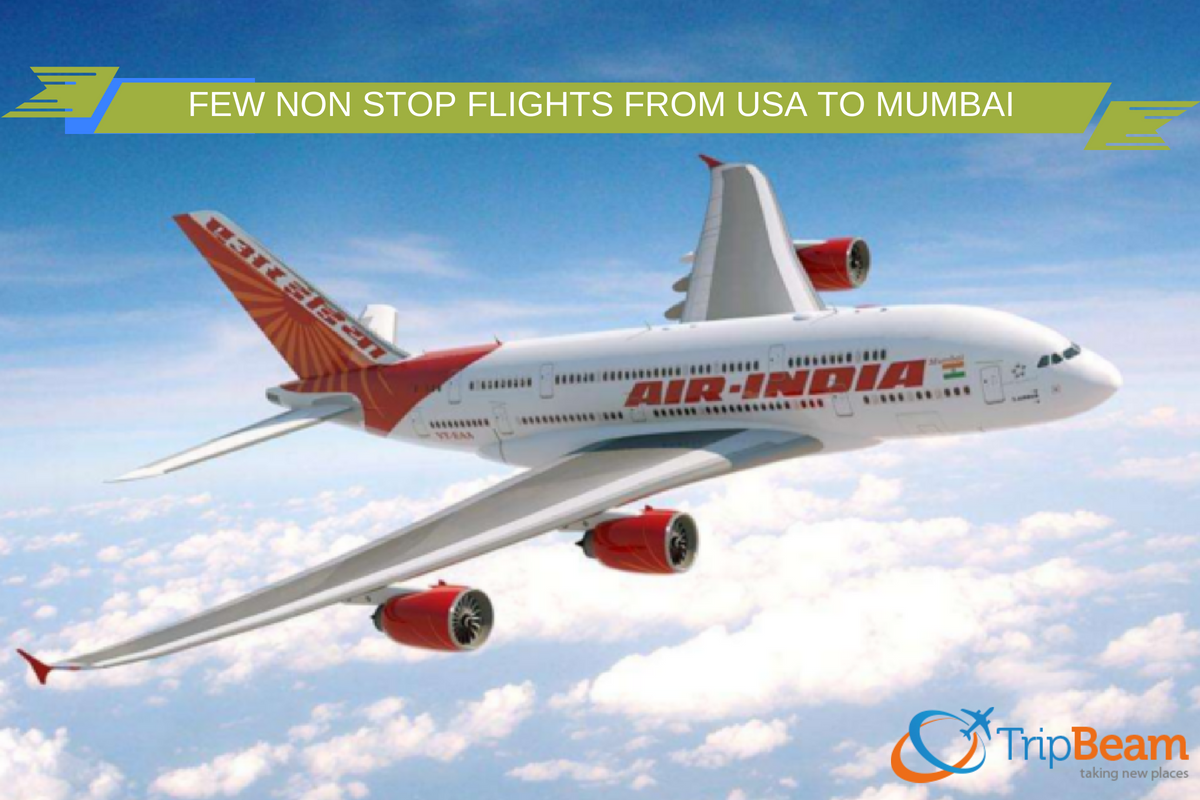 Pin By Tripbeam On Usa To India Flights India Air India Travel