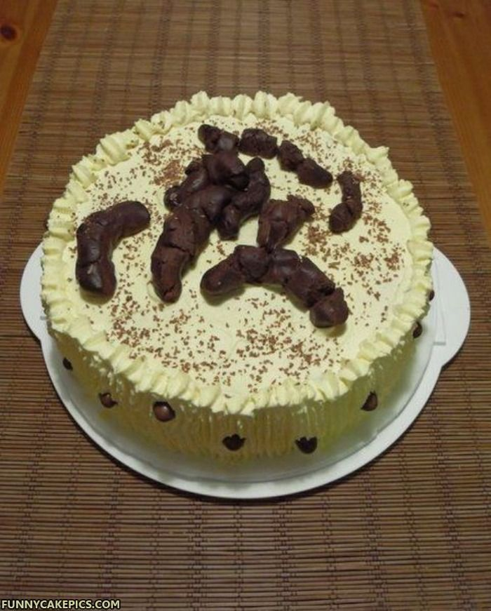 Funny Birthday Cake Delicious Turd Cake Funny Cake Pictures