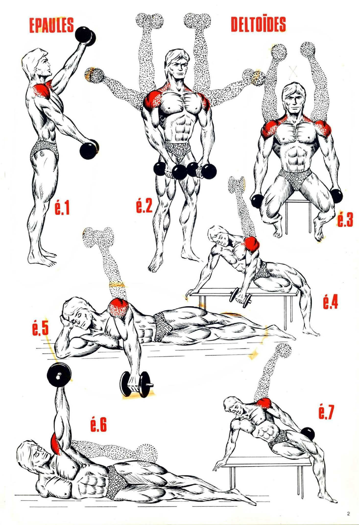 Exercice Musculation Pdf Programme Musculation Epaule Fitness Et Musculation Programme Musculation