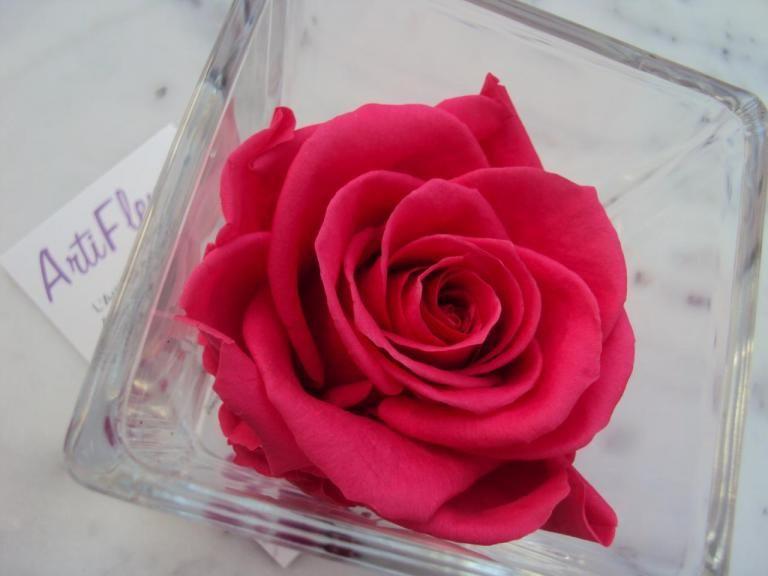 ❤ artifleurs ❤ on   rose