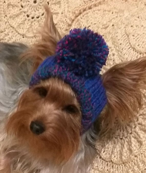For dogs/pet hats/ hat for boy dogs/winter dog от LyudmilaHandmade