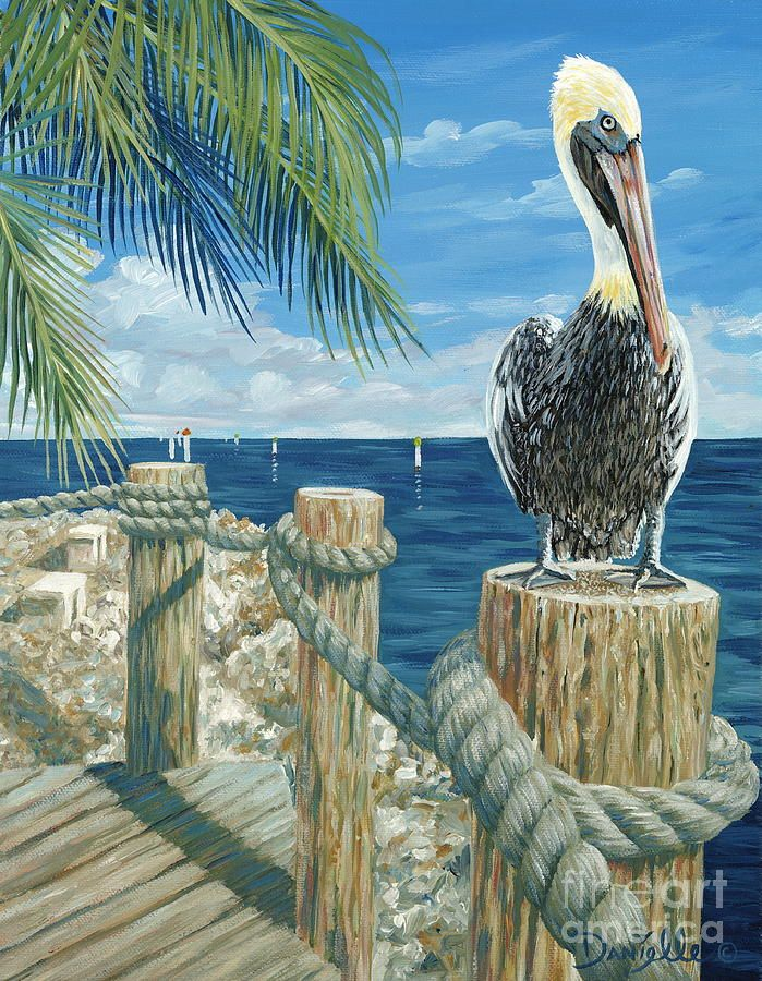 Key Largo Painting On The Lookout By Danielle Perry In 2020 Pelican Art Fine Art America Beach Art