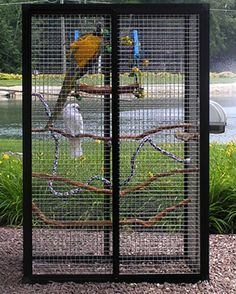 Outdoor Bird Cage Designs Check Out This Stylish Bird