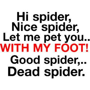 spider quotes funny