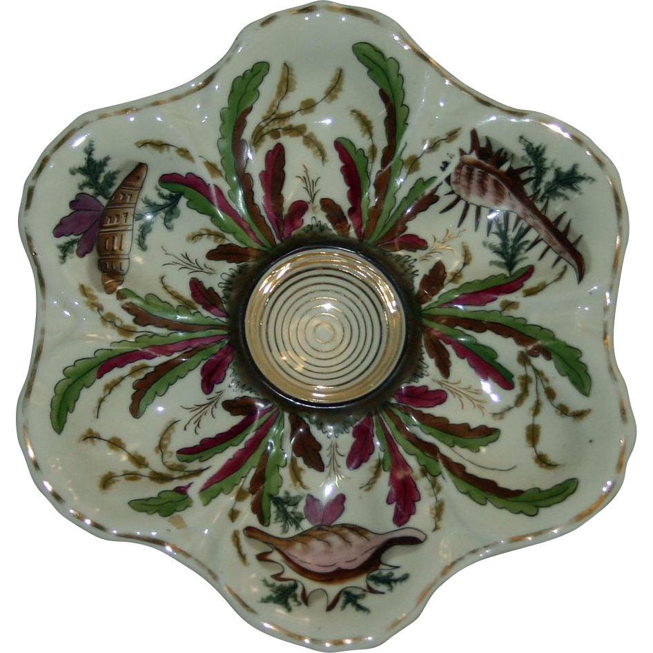 The wells of this handsome oyster plate depict sea creatures alternating with various types of seaweed. The colors are unusual-- claret, blush wine,